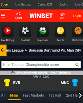 winbet mobile app dor Android and iOS